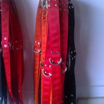 ogrlice-pse-slika-46041023